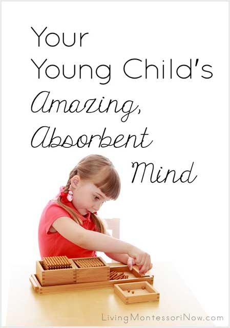 Your Young Child's Amazing, Absorbent Mind