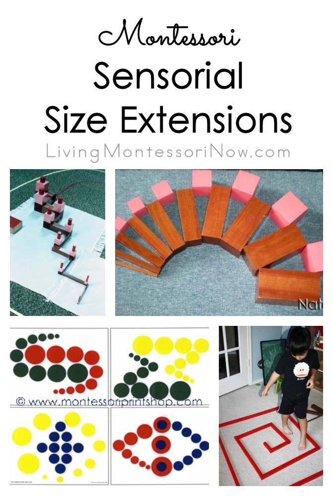 Montessori Sensorial Size Extensions
