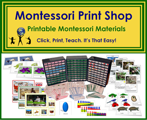Montessori Print Shop Sales