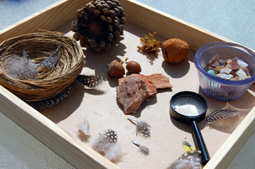 Nature Tray (Photo from Montessori for Everyone)