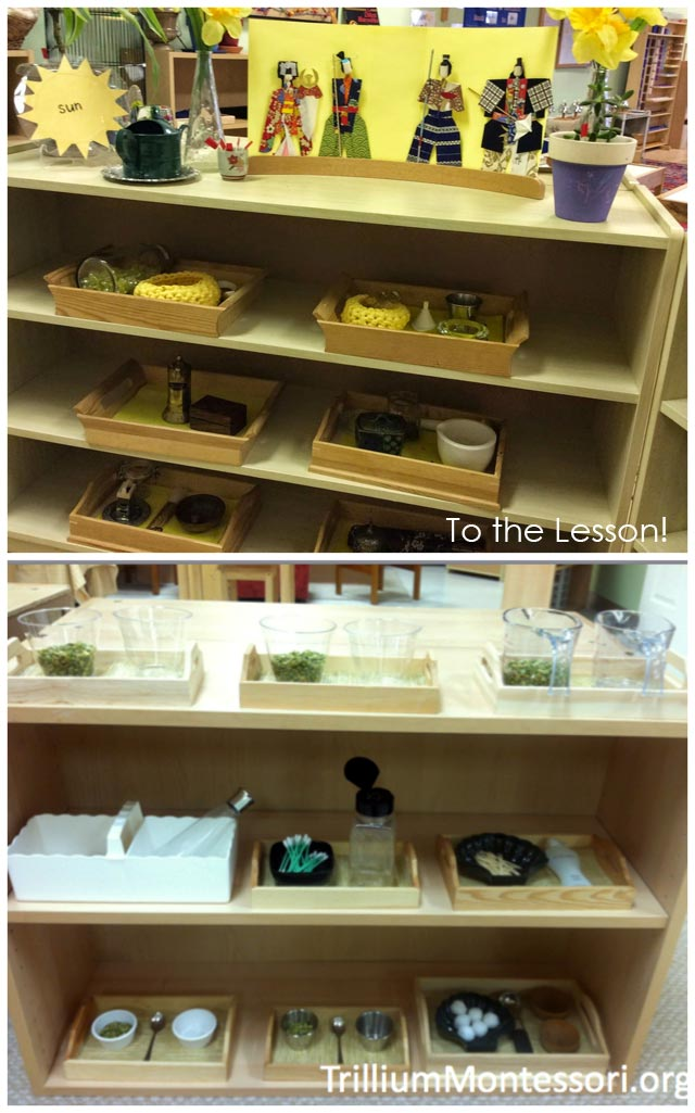Montessori Practical Life Shelves Emphasizing Dry Transfer Activities from To the Lesson! and Trillium Montessori