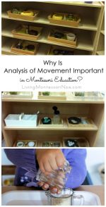 Why Is Analysis of Movement Important in Montessori Education?