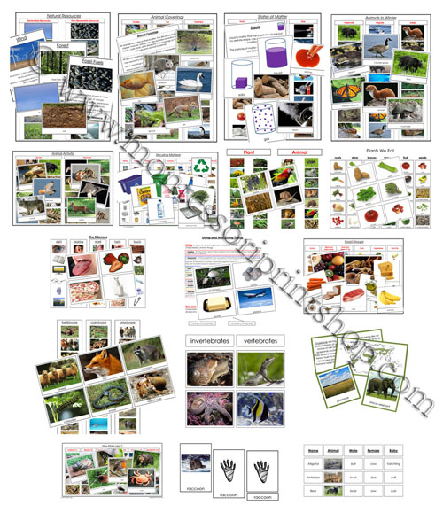 Just a few of the materials offered in the Montessori Print Shop Deluxe CD Rom