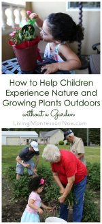 How to Help Children Experience Nature and Growing Plants Outdoors without a Garden