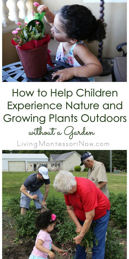 How-to-Help-Children-Experience-Nature-and-Growing-Plants-Outdoors-without-a-Garden