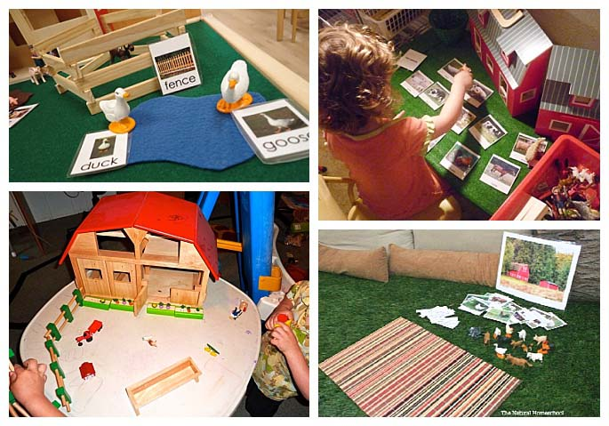 Montessori Grammar Farms