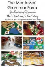 The Montessori Grammar Farm for Learning Grammar the Hands-on, Fun Way