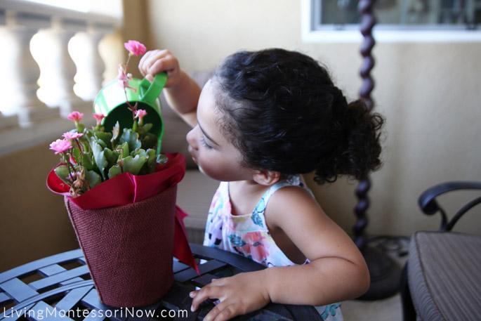 Watering a Plant at Grandma Deb's Home, 2016