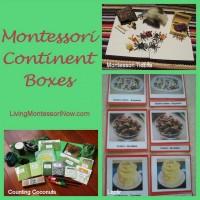 Montessori Continent Box Activities