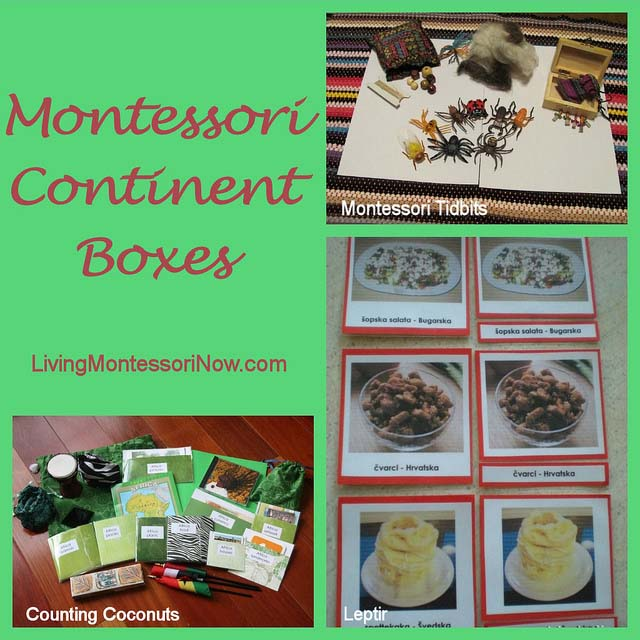 Montessori Continent Box Activities