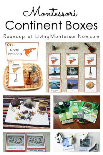 Montessori Continent Boxes
