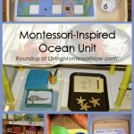 Montessori-Inspired Ocean Unit