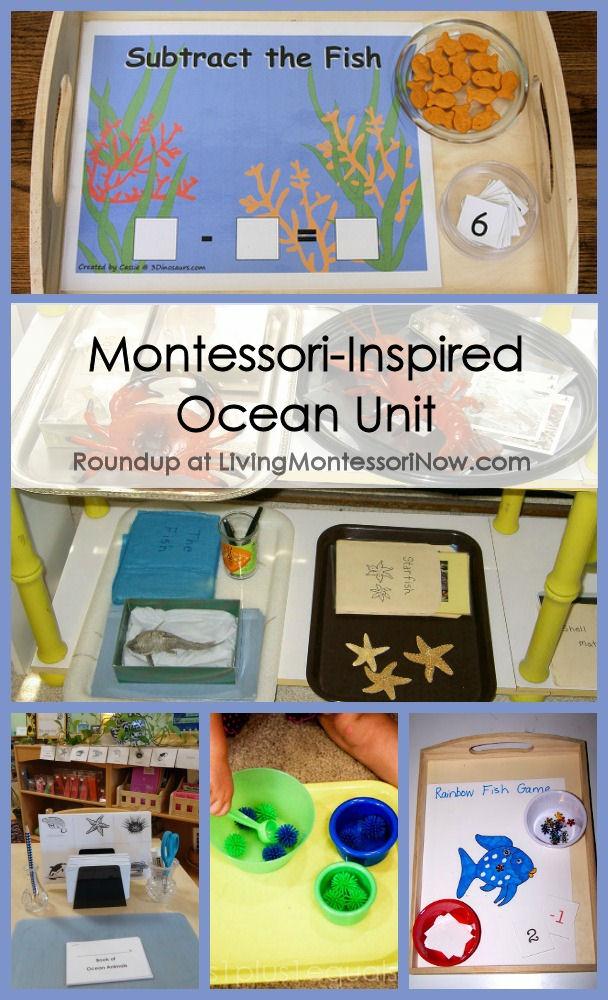 Montessori-Inspired Ocean Unit