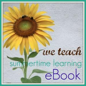 We Teach – Free Summertime Learning eBook!