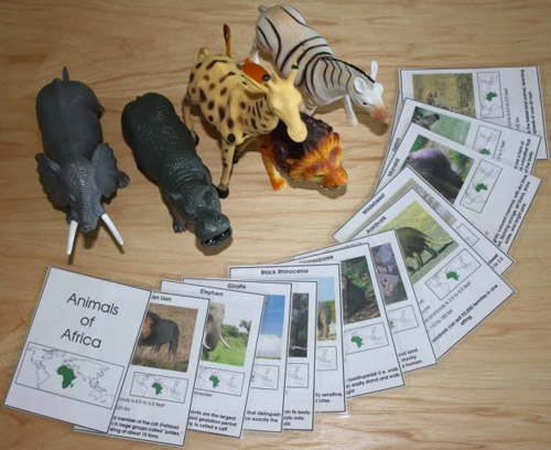 Animals of Africa (Photo from Montessori MOMents)
