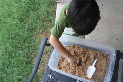 Paleontology Dig (Photo from Montessori MOMents)