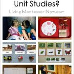Should You Use Unit Studies?