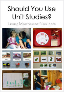 Should You Use Unit Studies