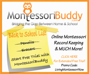 Montessori Buddy