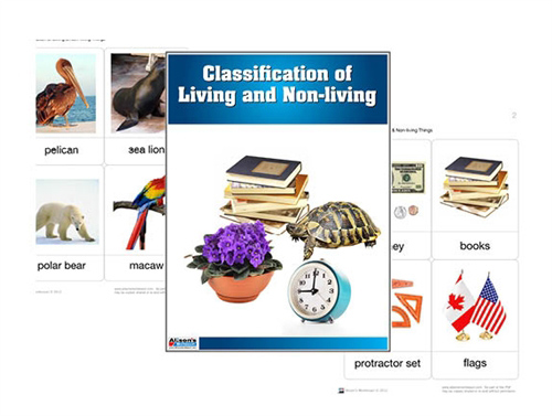 Classification of Living and Non-Living (Printed) from Alison's Montessori