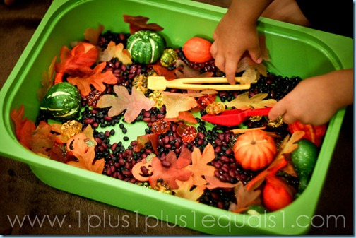 Fall Sensory Bin (Photo from 1+1+1=1)