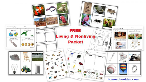 Living and Nonliving Packet from Homeschool Den