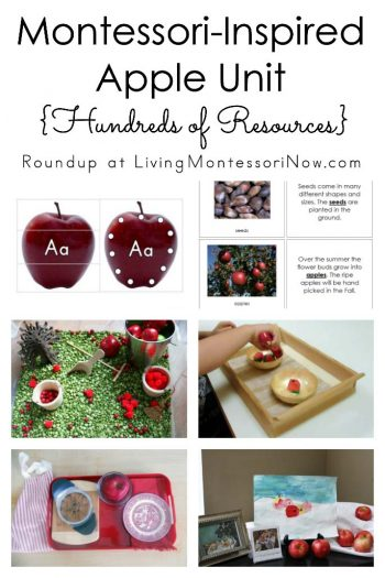 Montessori-Inspired Apple Unit {Hundreds of Resources}