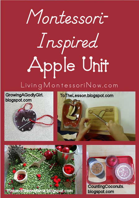 Montessori-Inspired Apple Unit