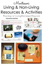 Montessori Living and Non-Living Resources and Activities
