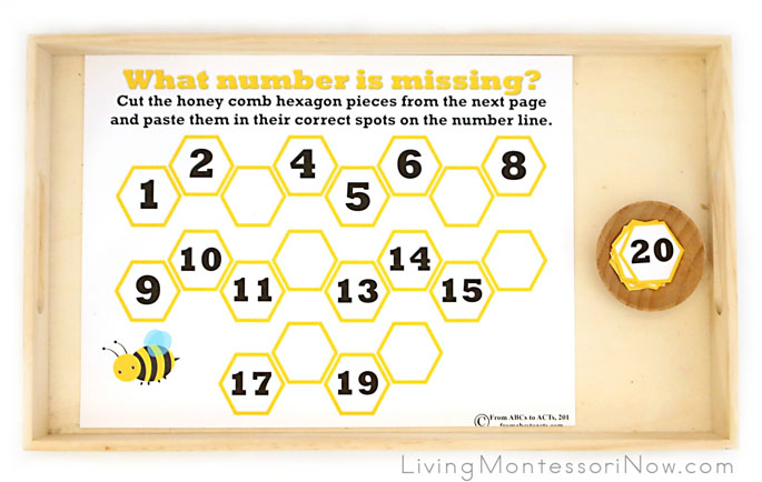 What Number Is Missing from the Honeycomb Activity