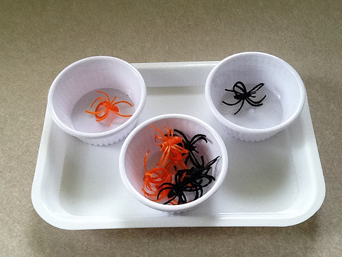 Spider Sorting (Photo from Growing a Godly Girl)