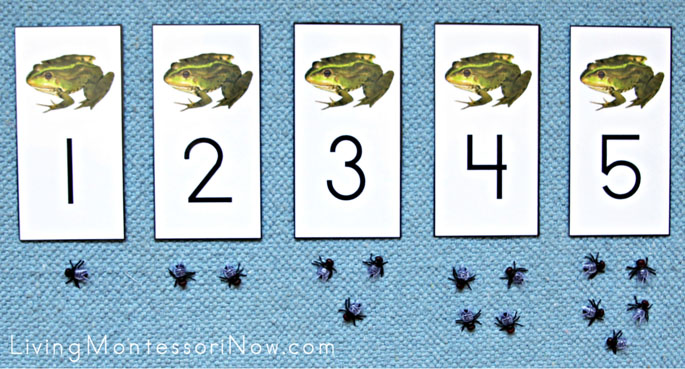 Frogs and Flies Cards and Counters Layout 1-5
