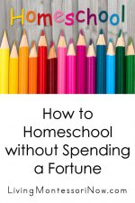 How to Homeschool without Spending a Fortune