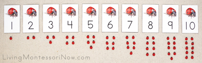 Ladybug Cards and Counters Layout