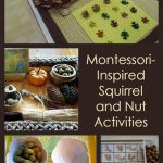 Montessori Monday – Montessori-Inspired Squirrel and Nut Activities