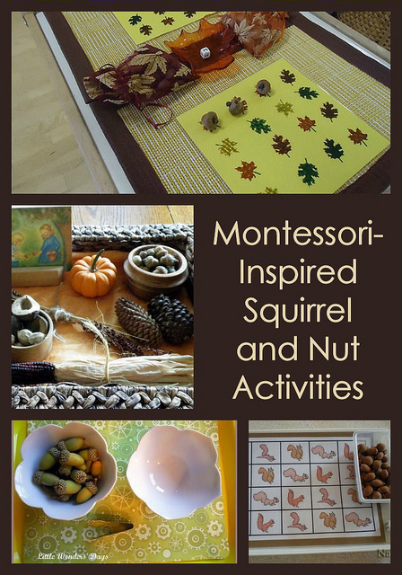 Montessori-Inspired Squirrel and Nut Activities