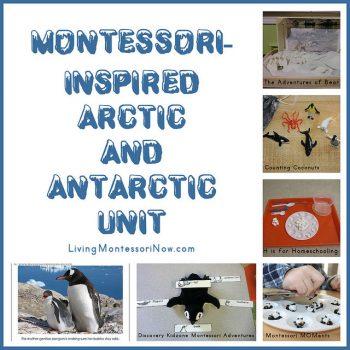 Montessori-Inspired Arctic and Antarctic Unit