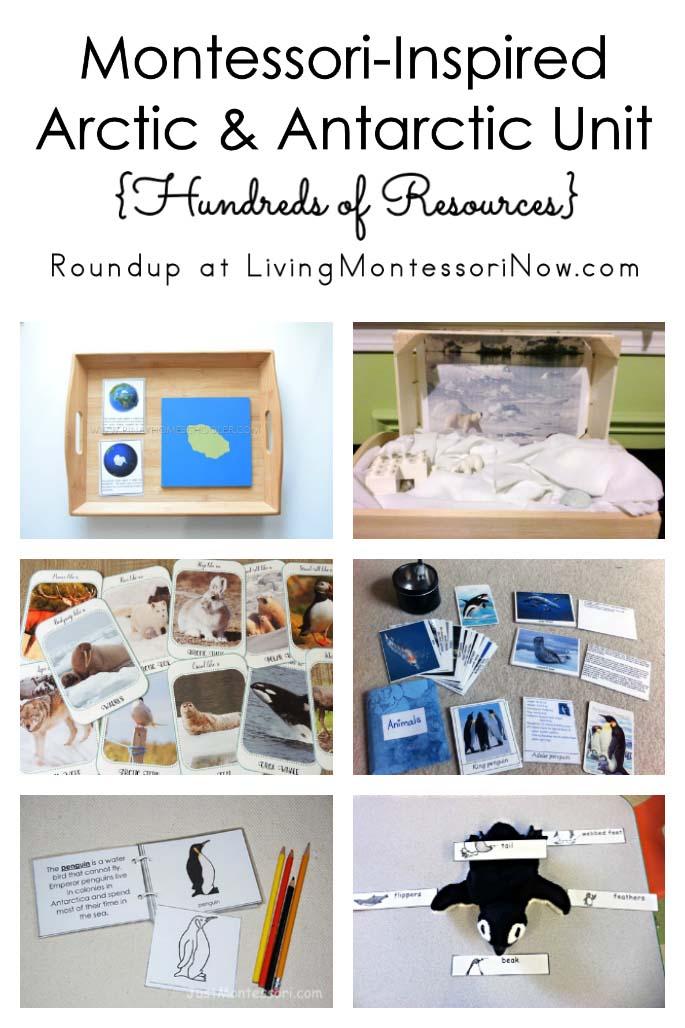 Montessori-Inspired Arctic and Antarctic Unit {Hundreds of Resources}