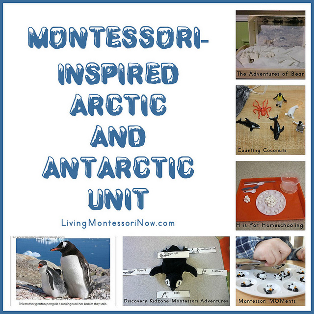 https://livingmontessorinow.com/montessori-inspired-arctic-and-antarctic-unit/