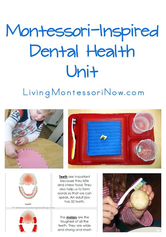Montessori-Inspired Dental Health Unit