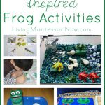 Montessori Monday – Montessori-Inspired Frog Activities for Leap Year or Anytime