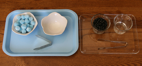 Small Tongs Activities from Montessori Services