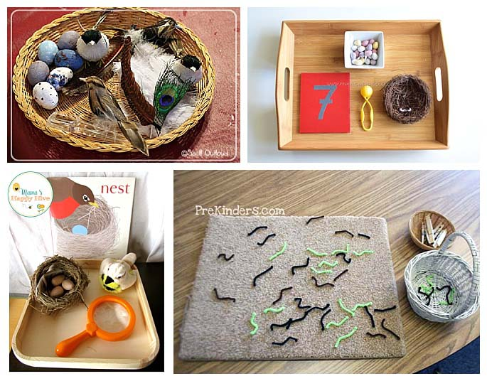 Montessori-Inspired Activities for a Bird Unit