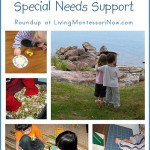 Montessori-Inspired Special Needs Support