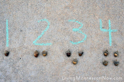 Acorn Outdoor Numbers and Counters for 1-10 Would Have Exactly 55 Acorns as a Control of Error