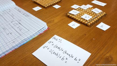 Concrete Algebra Work (Photo from Mi Escuelita Montessori)