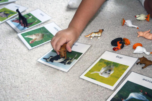 Farm Animal Matching (Photo from Montessori MOMents)