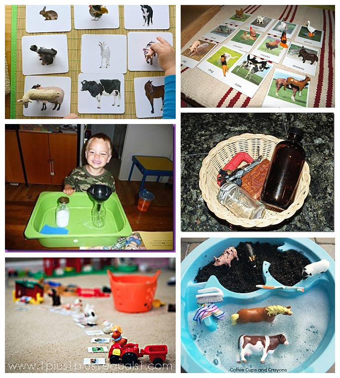 Montessori-Inspired Farm Activities