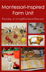 Montessori-Inspired Farm Unit