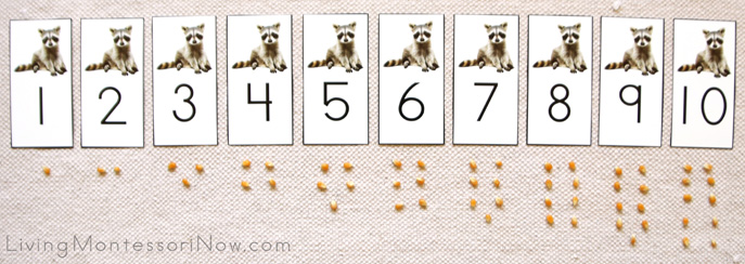 Raccoon Numbers and Counters Layout 1-10